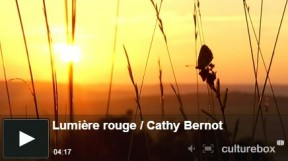 video-cathy-bernot