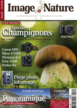 images-nature-champignon