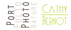Cathy Bernot Photographie | Balade en Champagne Ardenne
