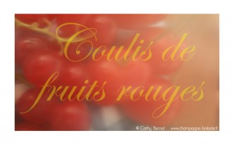 fruits-rouges-jardin-coulis