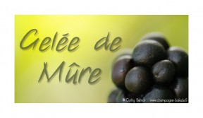 mure-gelee