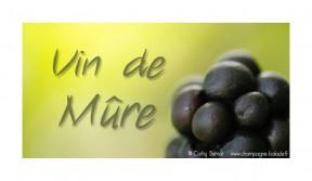 mure-vin