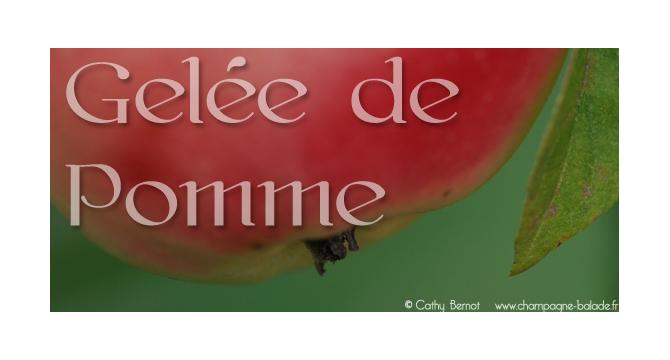 Tiquette gel e de pomme confiture cathy bernot - Gelee de pommes avec extracteur ...