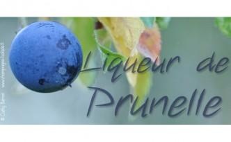 prunelle-liqueur